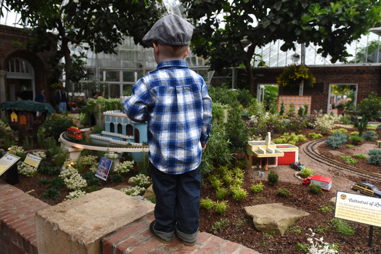 Two year-old Charlie Lamb intently watches the Mr. Rogers trolley at Phipps Conservatory and Botanical Gardens. Although older generations recognize the trolley from Mr. Rogers, he sees it as part of Daniel Tiger and annimated show inspired by Mr. Rogers. It's part of the garden railroad here with a theme of 200 Years of Pittsburgh. The exhibit follows Pittsburgh from the 1870's through 2013. It includes Mr. Rogers, Three Rivers Stadium, Forbes Field, KDKA radio and more.