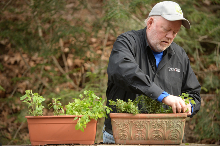 Tribune-Review home and garden editor Doug Oster plants a container with herbs to grow inside on the windowsill.