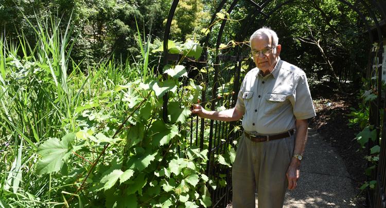 Biblical Botanical Garden Celebrates 30 Years Of Teaching Everybody Gardens