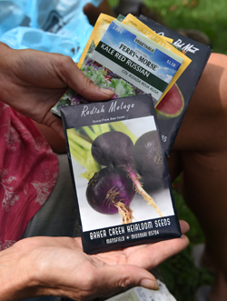 Karin Eller, owner of Plant-It Earth Greenhouse near Homer City, holds seed packets of plants that will planted for the fall and winter garden.