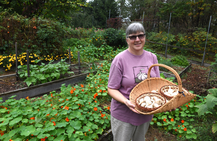 Lyn Lang's garlic will be planted soon. She has lots of tips and tricks for getting the biggest and tastiest bulbs. She stand in her Richland Township garden with a couple different types.