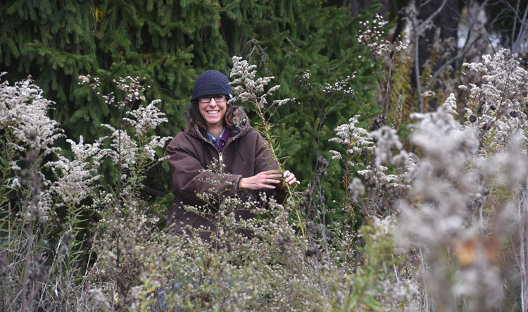 Roxanne Swan is coordinator of the Audubon Center for Native Plants at Beechwood Farms and an environmental botanist. At the end of the season she leaves most of the native perennial plants in place to benefit wildlife. It's part of putting the garden to bed