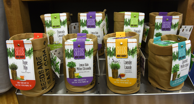 Seeds are Easy is a new product from 2Plant International. Just add water to the pot and wait for the seeds to germinate.