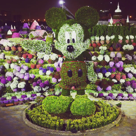 Mickey Mouse floral