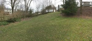 Backyard Bottom Panorama