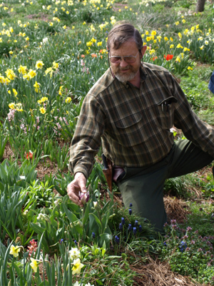 Brent Heath runs Brent and Becky's Bulbs in Gloucester, VA with his wife Becky. Planting summer bulbs can be done right now.