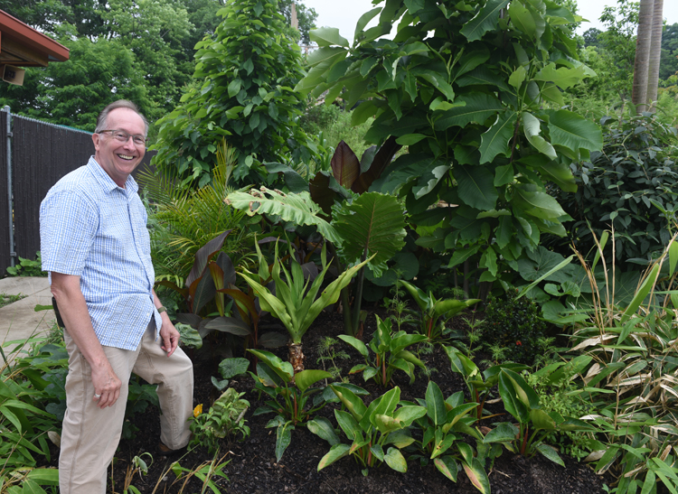 Frank Pizzi is curator of horticulture and grounds at the Pittsburgh Zoo and PPG aquarium. He's got lots of great ideas for gardeners interested in growing tropical plants. The Jungle Odyssey exhibit at the zoo showcases many of the plants he recommends for home gardeners.
