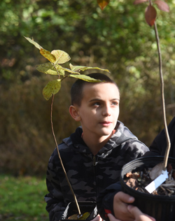 Damien Diller, 11, a student from Ross Elemetary holds a tree he's about to plant as part of a One Tree Per Child Pittsburgh event in Sangree Park in Ross.