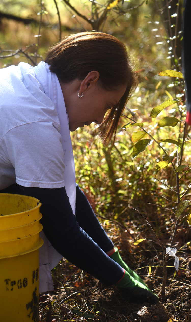 Isabela Angelelli is director and cofounder of One Tree Per Child Pittsburgh. She plants a tree in Sangree Park in Ross with students from Ross Elementary.