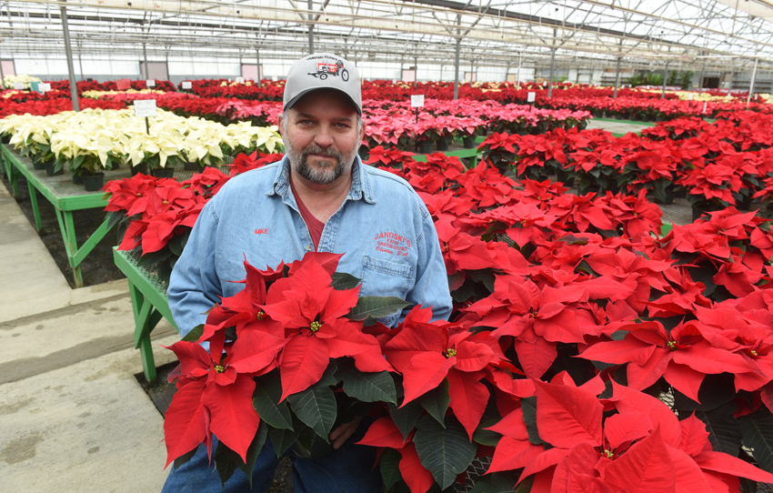 Mike Janoski is an owner of Janoski's Farm and Greenhouse in Clinton, Pa. His family has grown poinsettias in their greenhouses since 1978.