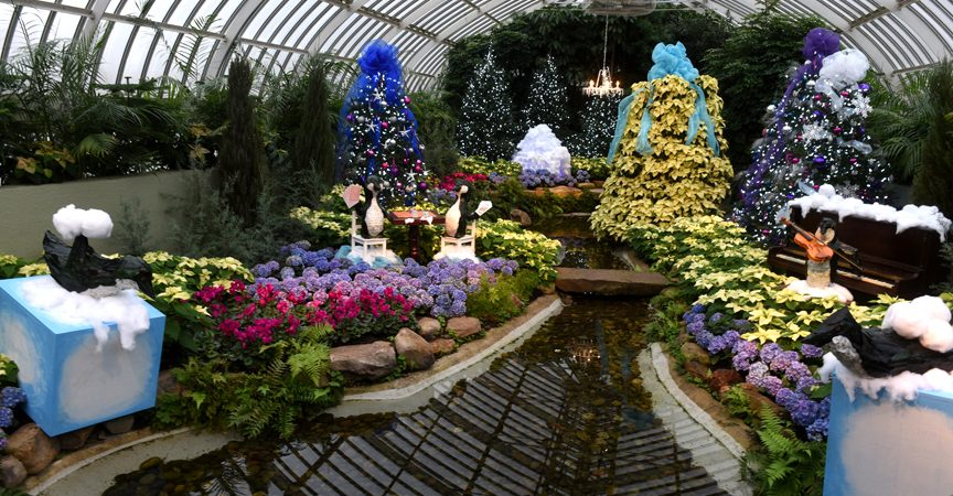 Phipps' Winter Flower Show should be explored at a relaxed pace to reveal the attention to detail.