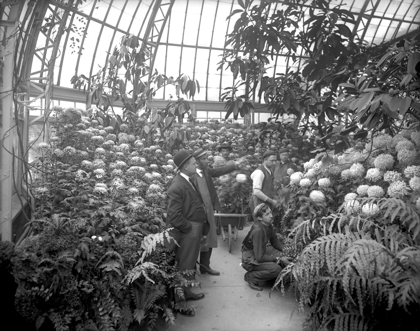The Fall Flower Show at Phipps in 1907.