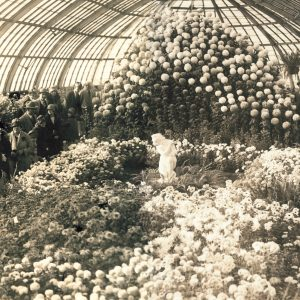 The Fall Flower Show at Phipps in 1929.