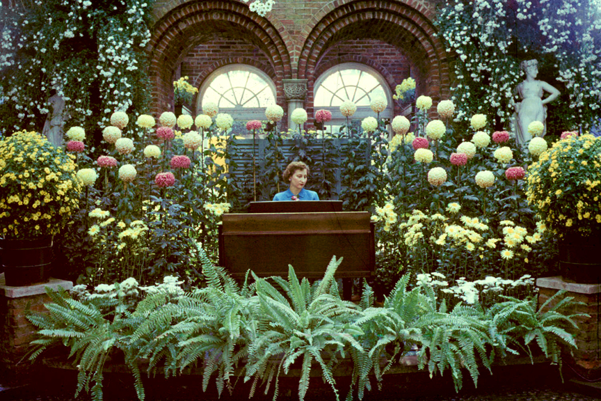 The Palm Court was the scene for some music during the 1951 Fall Flower Show at Phipps.