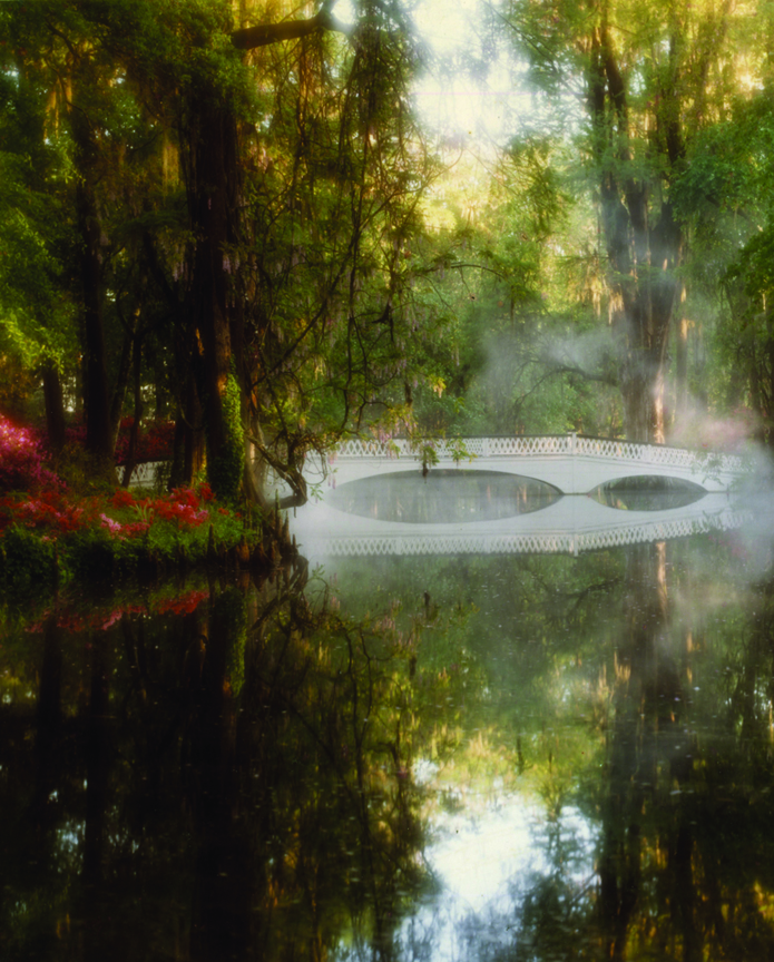 Magnolia Plantation and Gardens in Charleston, SC., is the oldest public garden in the country, opening its doors in 1870. The iconic White Bridge is one of the most photographed parts of the garden, it was built in 1840.