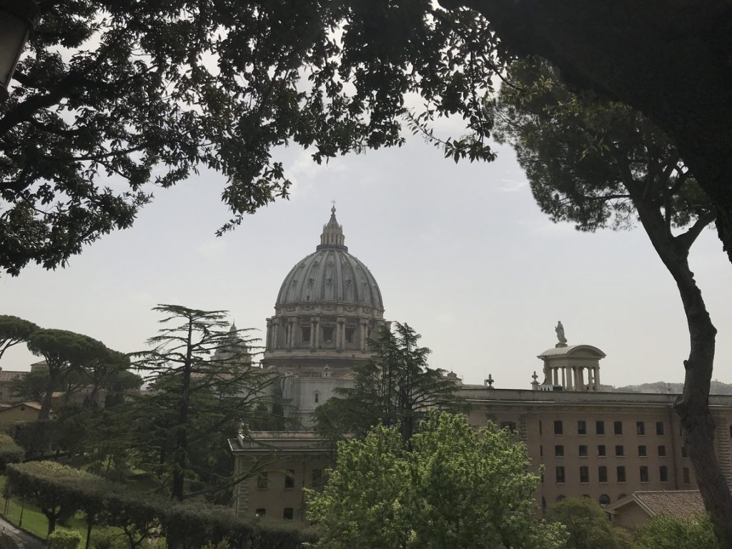 There is a beautiful view of St. Peter's Dome from the Vatican Gardens.