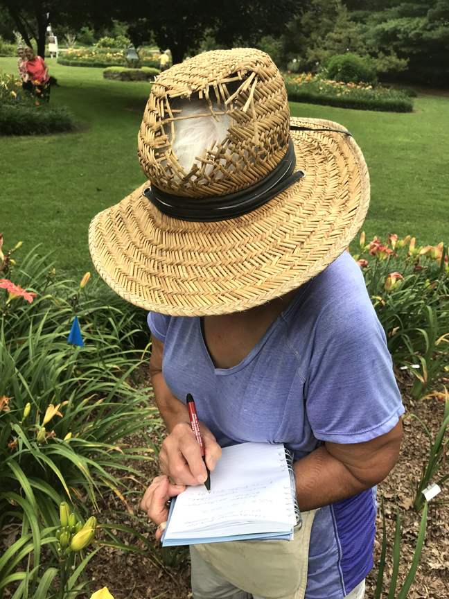 Sarah and Steve Zolock have introduced over 165 named varieties of daylily and more than 50 new hostas. The couple has gardened at their Rostraver home for decades but are getting ready to sell and downsize. Sarah still loves her garden hat and enjoys a cool breeze through the hole in the top.