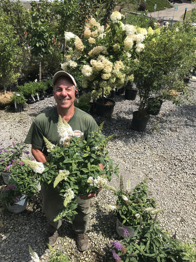 Horticulturist Richard Liberto from Best Feeds Landscape and Liberto Design wants to help homeowners choose the right tree for their landscape. Photos by Doug Oster