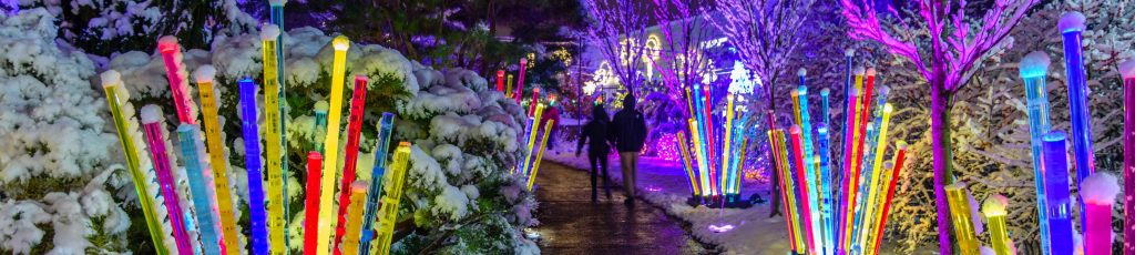"""Holiday Magic! Winter Flower Show and Light Garden at Phipps Conservatory and Botanical Garden is the topic of WQED's Pittsburgh 360 program, """"Building the Festival of Trees."""
