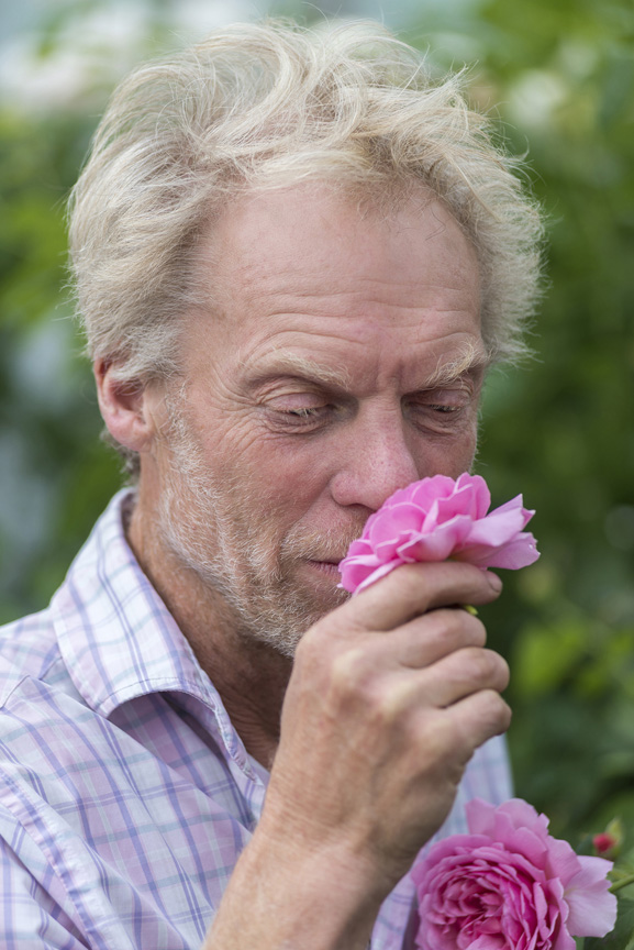 """I have become a rather compulsive sniffer,"" admits British rose expert Michael Marriott. ""It's a natural reaction to lean over and sniff a flower. If there's no fragrance you're disappointed. I believe this is doubly true with roses where the anticipation of fragrance is so strong. If a rose is not fragrant the disappointment is somehow deeper."" Fortunately Marriott, the technical director and senior rosarian of David Austin Roses in Shropshire, England is rarely disappointed, certainly not on the job. The voluptuous English Roses of David Austin are generally regarded as among the most fragrant groups of roses available today. In addition to vigor and lush flowers, fragrance has been a hallmark of Austin breeding since the beginning in 1961. One of Marriott's tasks as senior rosarian is to oversee the official description of the fragrance of each of Austin's English Rose varieties."