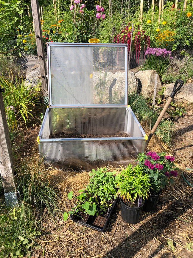 Niki Jabbour is an expert at growing plants year round even in Nova Scotia. This coldframe is about to be filled with cool weather crops.