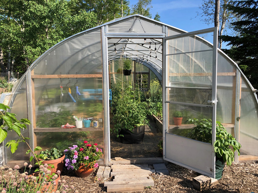 Niki Jabbour is an expert at growing plants year round even in Nova Scotia. Her poly tunnel is also used in the summer too.