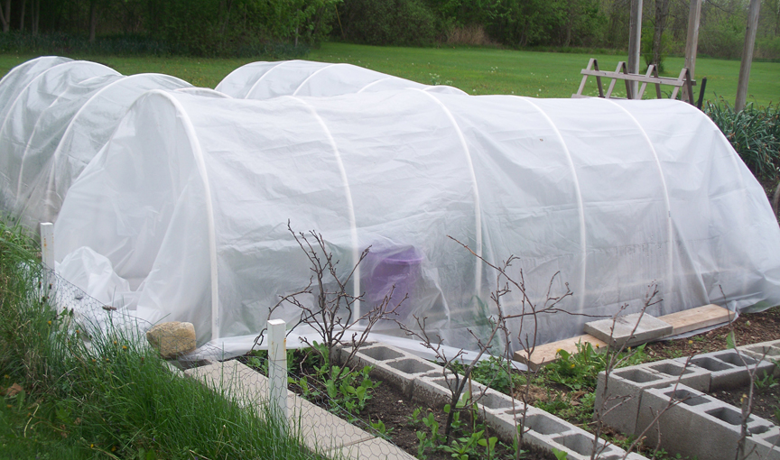 Sue Gilmore has been gardening most of her life. She's growing a wide variety of plants and wants to up her game when it comes to winter gardening. These mini hoop houses keep cool weather plants happy in the winter.